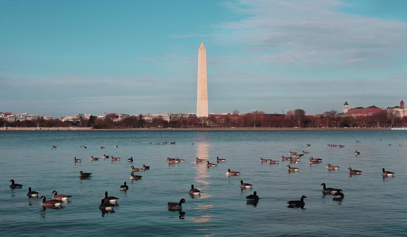Washington DC Memorials